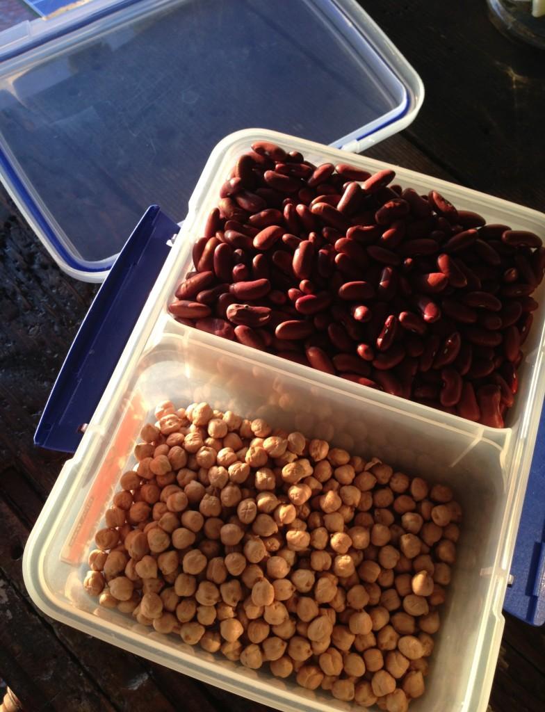 Legumes | Nadia Felsch