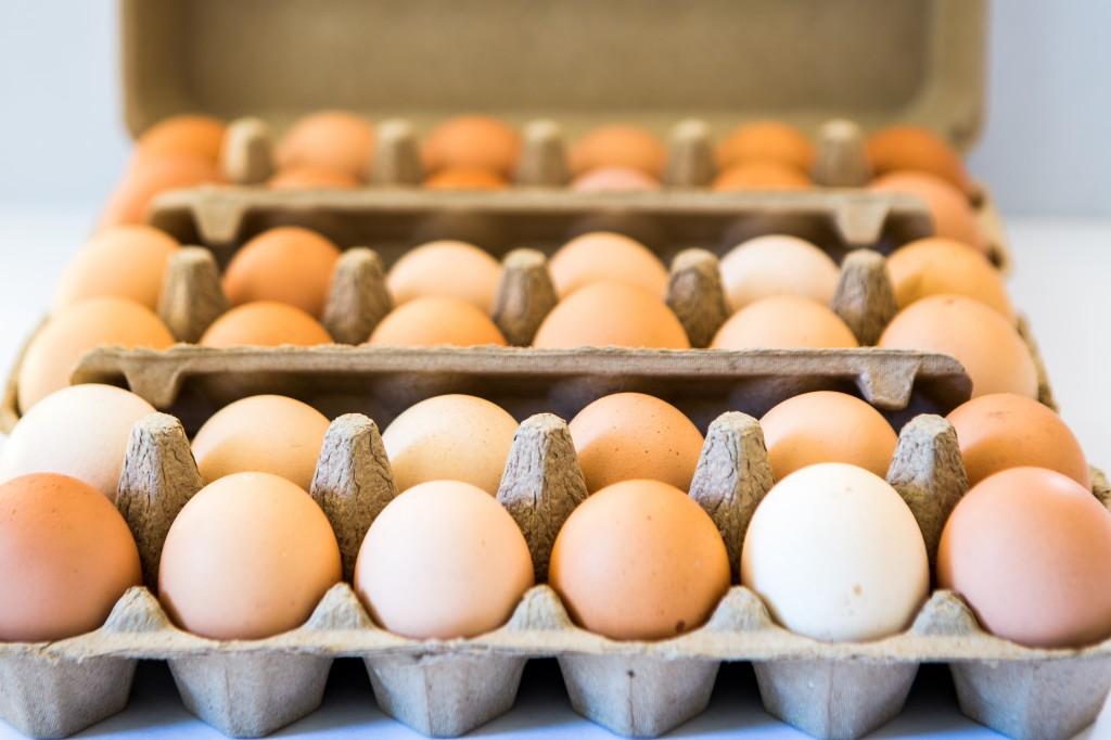 Eggs | Nadia Felsch