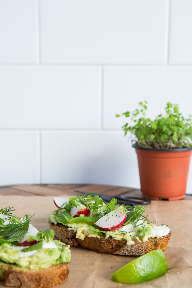 Avocado on Toast | Nadia Felsch