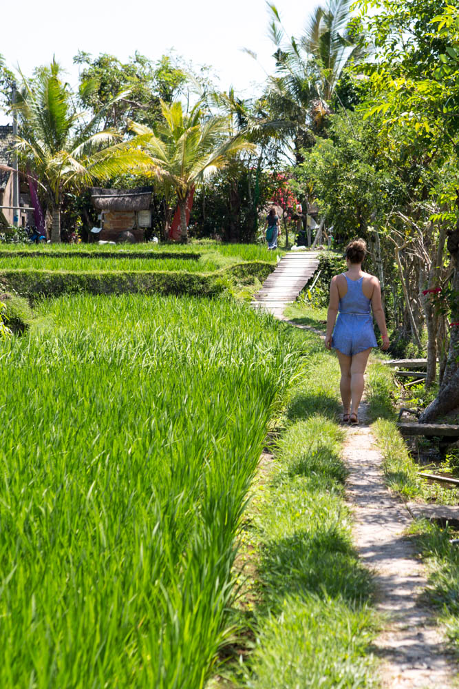 Bali Travel Guide: Part Three